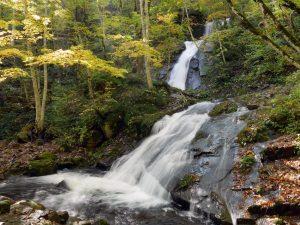 宇津江四十八滝(県立自然公園)
