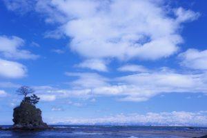 富山湾の海の幸